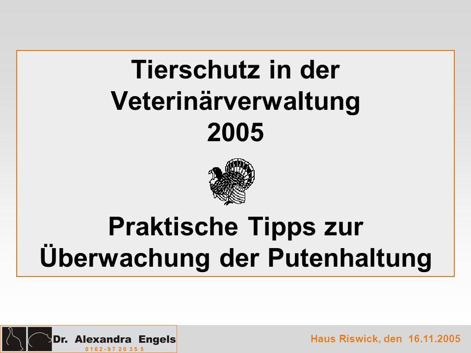Tierschutz in der Veterinärverwaltung 2005 Praktische Tipps zur Überwachung der Putenhaltung Haus Riswick, den 16.11.2005