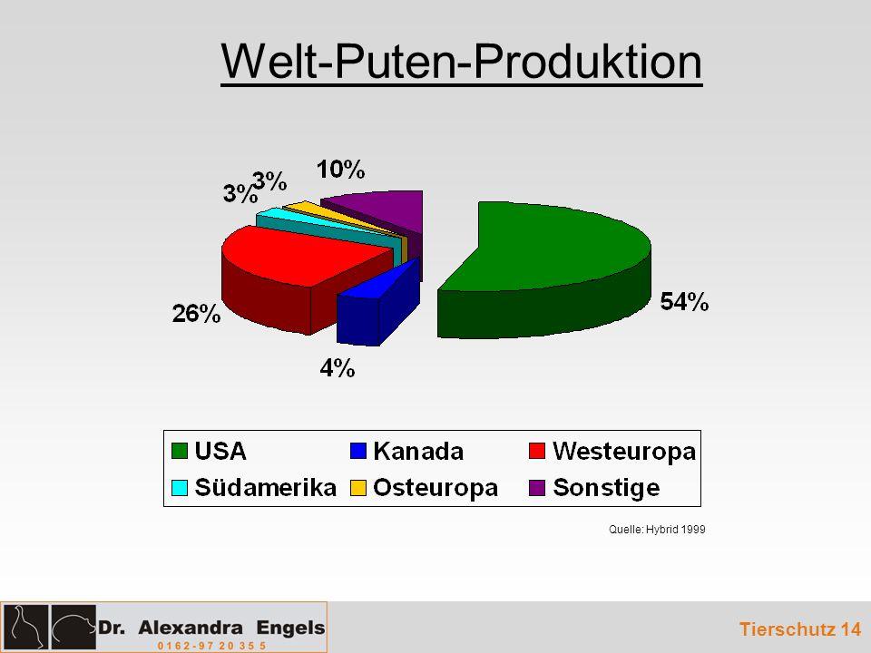 Welt-Puten-Produktion Tierschutz 14 Quelle: Hybrid 1999
