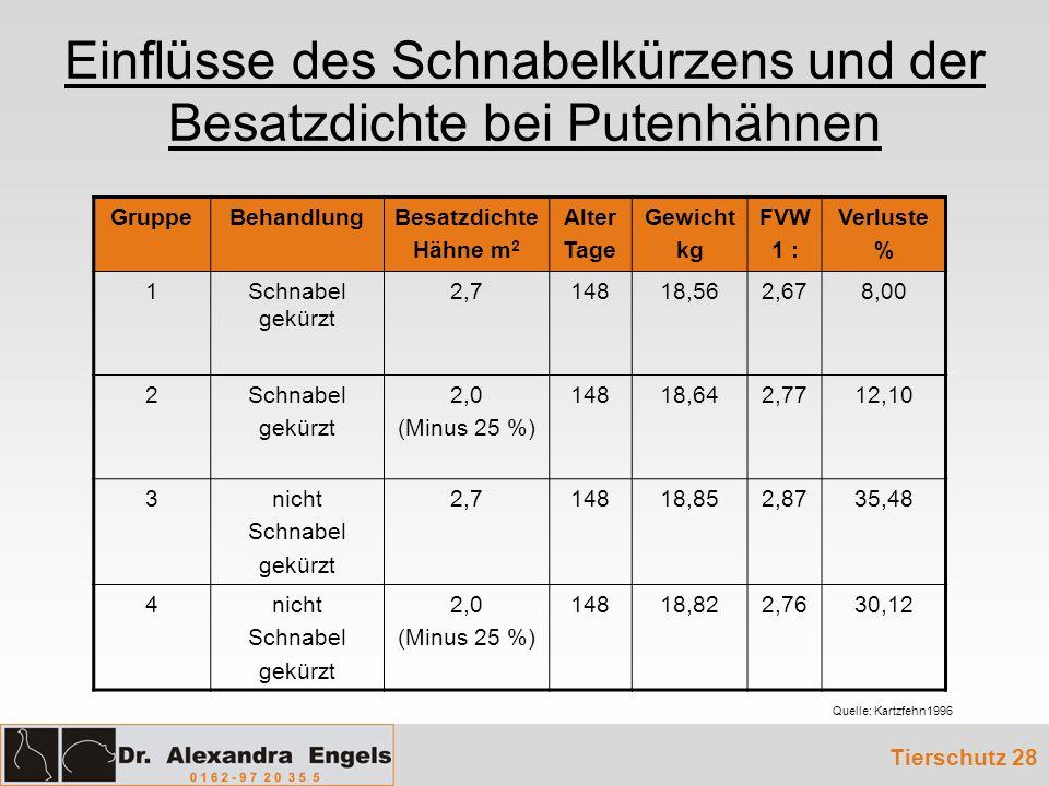 Einflüsse des Schnabelkürzens und der Besatzdichte bei Putenhähnen Tierschutz 28 GruppeBehandlungBesatzdichte Hähne m 2 Alter Tage Gewicht kg FVW 1 :