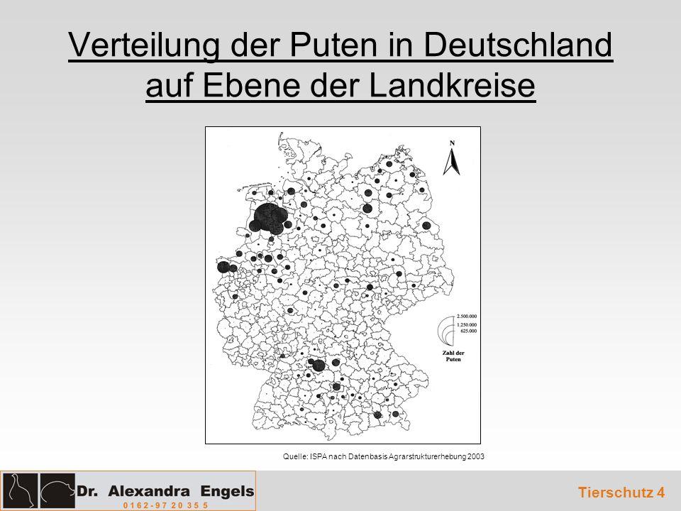 Verteilung der Puten in Deutschland auf Ebene der Landkreise Quelle: ISPA nach Datenbasis Agrarstrukturerhebung 2003 Tierschutz 4