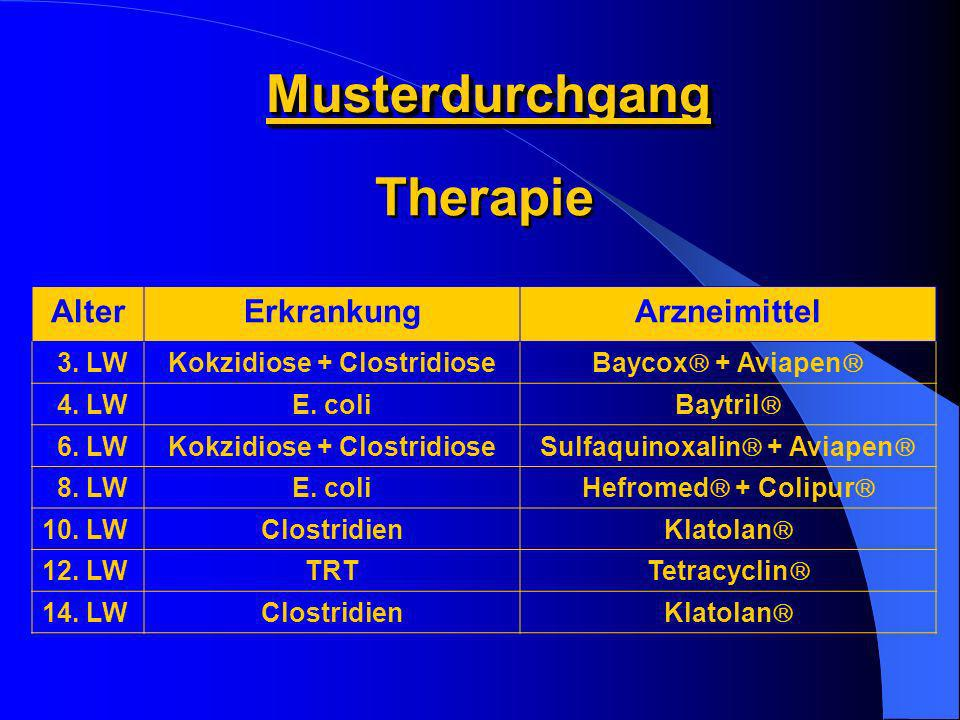 MusterdurchgangMusterdurchgang AlterErkrankungArzneimittel 3. LWKokzidiose + Clostridiose Baycox + Aviapen 4. LWE. coli Baytril 6. LWKokzidiose + Clos