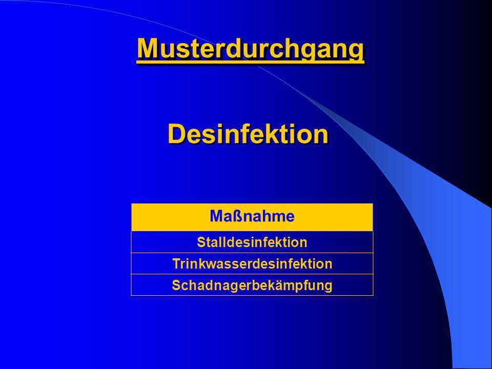 MusterdurchgangMusterdurchgang Maßnahme Stalldesinfektion Trinkwasserdesinfektion Schadnagerbekämpfung Desinfektion