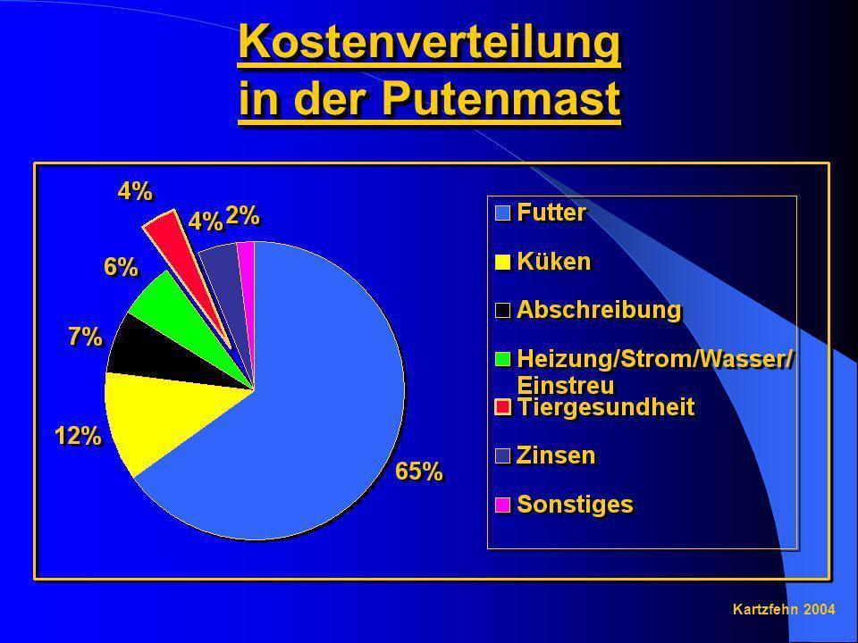 Kostenverteilung in der Putenmast Kartzfehn 2004