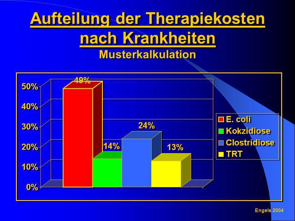 Aufteilung der Therapiekosten nach Krankheiten Aufteilung der Therapiekosten nach Krankheiten Musterkalkulation Engels 2004