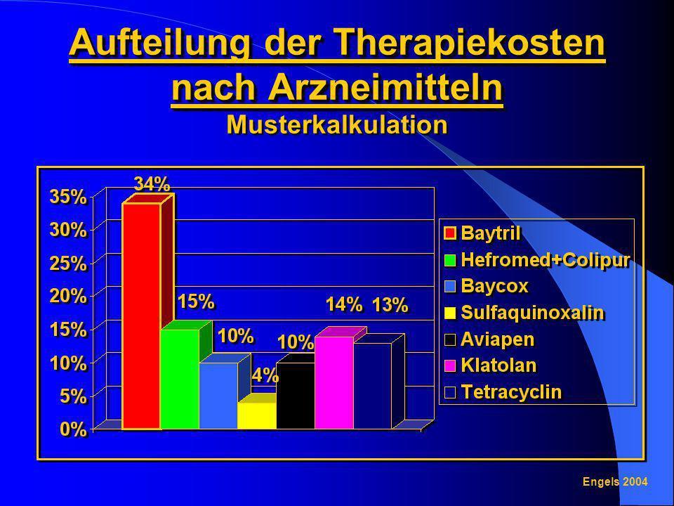 Aufteilung der Therapiekosten nach Arzneimitteln Aufteilung der Therapiekosten nach Arzneimitteln Musterkalkulation Engels 2004