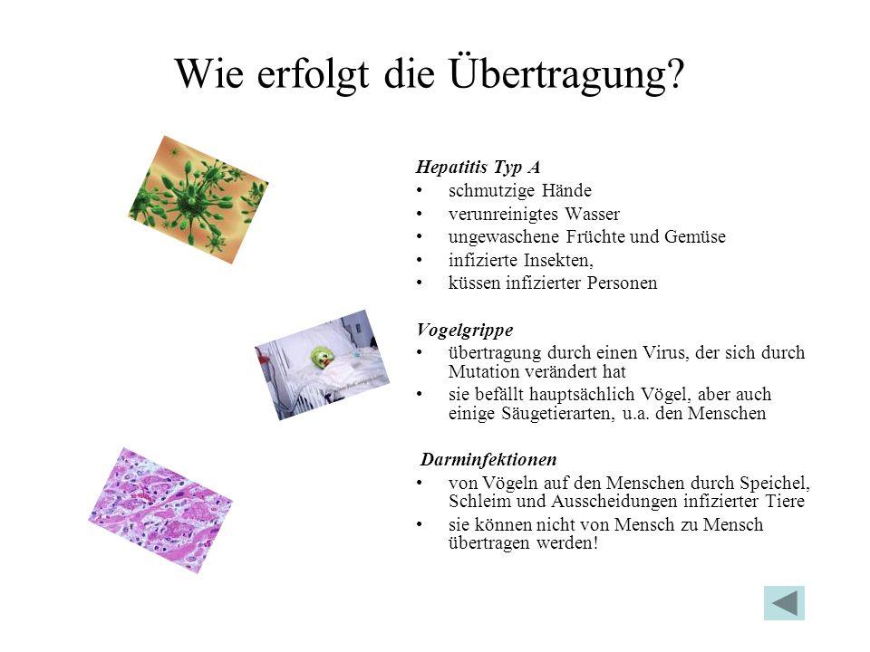 Wie erfolgt die Übertragung? Hepatitis Typ A schmutzige Hände verunreinigtes Wasser ungewaschene Früchte und Gemüse infizierte Insekten, küssen infizi