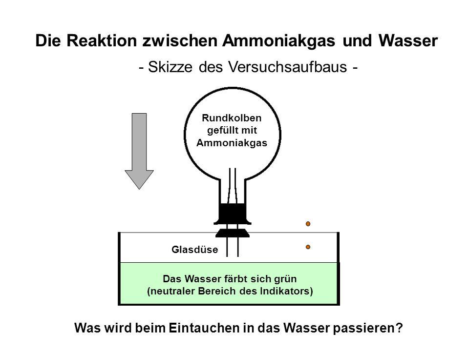 Schale mit Wasser Die Reaktion zwischen Ammoniakgas und Wasser - Skizze des Versuchsaufbaus - Rundkolben gefüllt mit Ammoniakgas Glasdüse Was wird bei