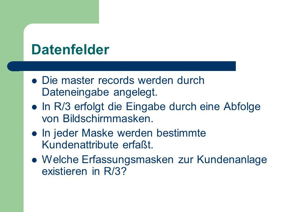 Datenfelder Die master records werden durch Dateneingabe angelegt. In R/3 erfolgt die Eingabe durch eine Abfolge von Bildschirmmasken. In jeder Maske
