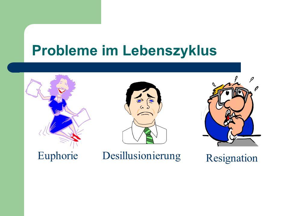 Probleme im Lebenszyklus EuphorieDesillusionierung Resignation