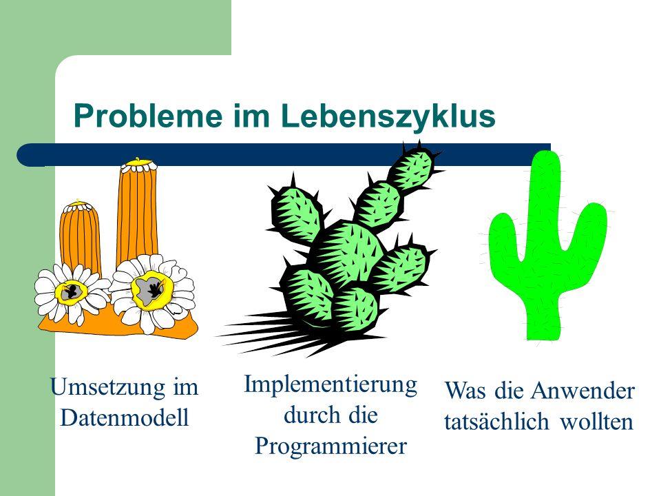 Probleme im Lebenszyklus Umsetzung im Datenmodell Implementierung durch die Programmierer Was die Anwender tatsächlich wollten