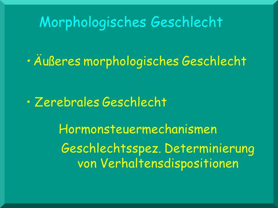 Morphologisches Geschlecht Äußeres morphologisches Geschlecht Zerebrales Geschlecht Geschlechtsspez. Determinierung von Verhaltensdispositionen Hormon