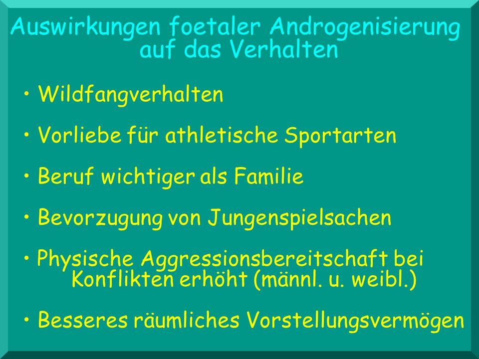 Auswirkungen foetaler Androgenisierung auf das Verhalten Vorliebe für athletische Sportarten Wildfangverhalten Beruf wichtiger als Familie Physische A