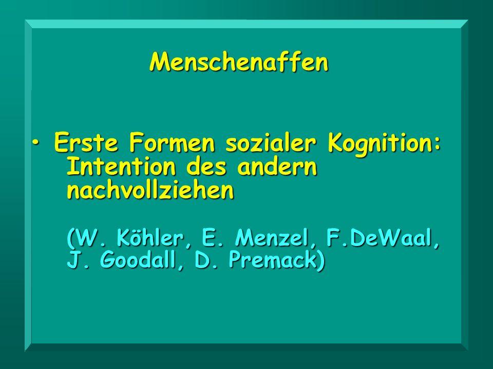 Menschenaffen Erste Formen sozialer Kognition: Erste Formen sozialer Kognition: Intention des andern nachvollziehen (W. Köhler, E. Menzel, F.DeWaal, J