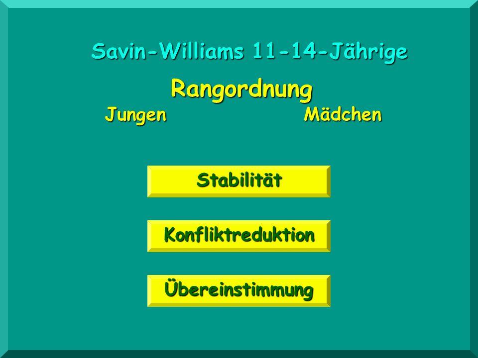 Übereinstimmung Konfliktreduktion Rangordnung JungenMädchen Stabilität Savin-Williams 11-14-Jährige