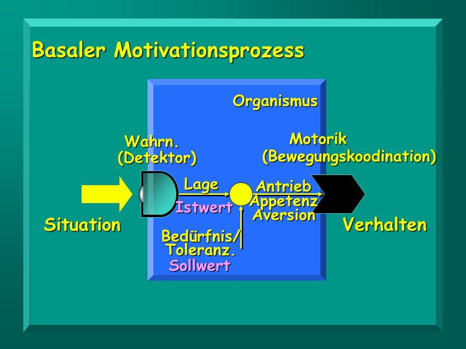 Situation Wahrn. Motorik LageAntriebAppetenzAversion Bedürfnis/Toleranz. Verhalten Basaler Motivationsprozess Istwert Sollwert Organismus (Detektor) (