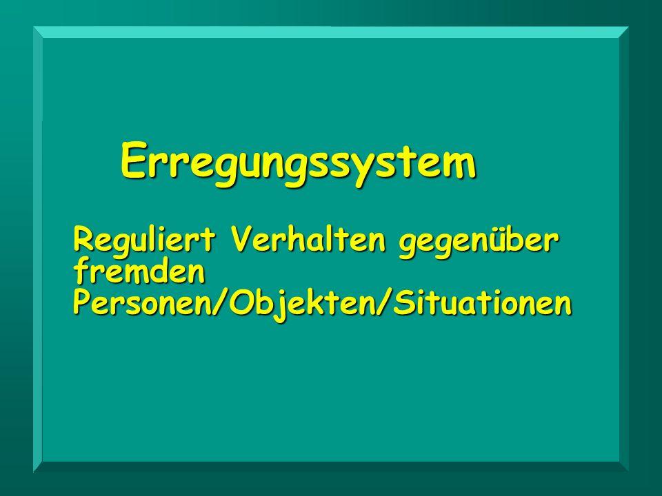 Erregungssystem Reguliert Verhalten gegenüber fremden Personen/Objekten/Situationen