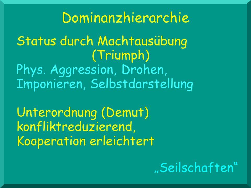 Status durch Machtausübung (Triumph) Phys. Aggression, Drohen, Imponieren, Selbstdarstellung Unterordnung (Demut) konfliktreduzierend, Kooperation erl