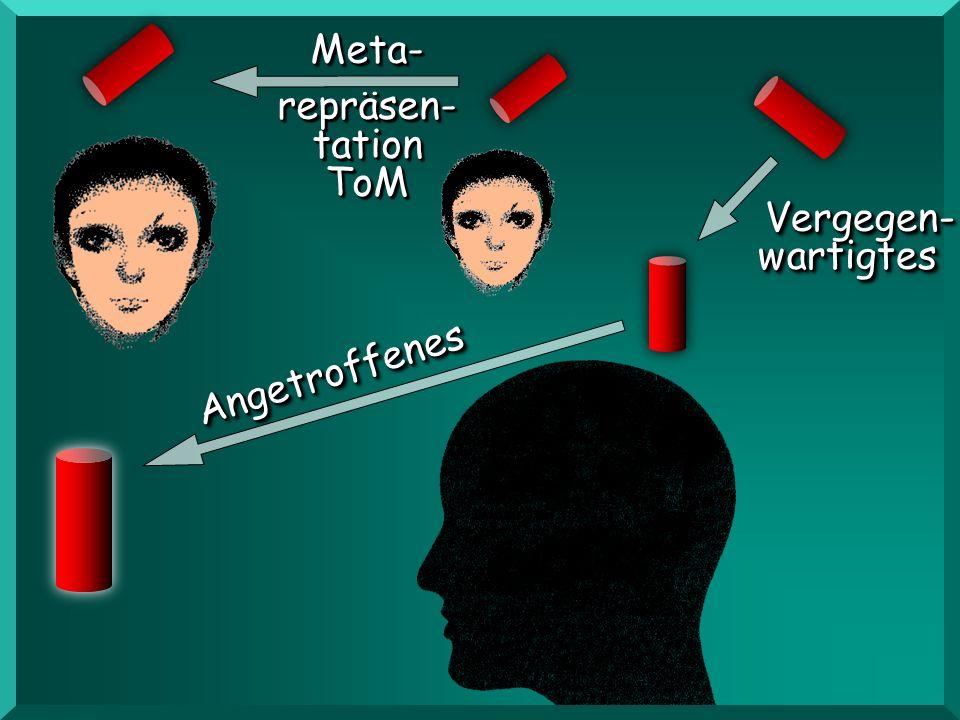 AngetroffenesAngetroffenes Vergegen- wartigtes wartigtes Vergegen- Meta- repräsen- tation ToMMeta- ToM