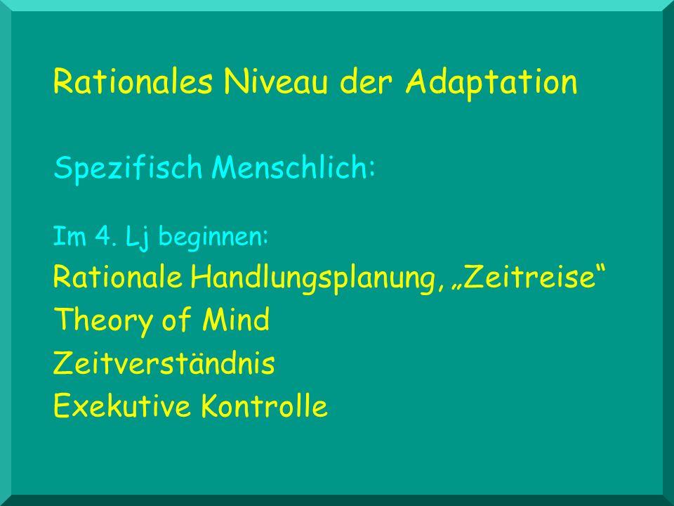 Rationales Niveau der Adaptation Spezifisch Menschlich: Im 4. Lj beginnen: Rationale Handlungsplanung, Zeitreise Theory of Mind Zeitverständnis Exekut