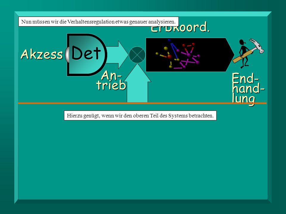 Orga- nismus Zu-fuhr Bedürf- nis Det Valenz Bestand Be-darf Rück- Rück-satz SchwundErbkoord.End-hand-lung Akzess An-trieb Det Hierzu genügt, wenn wir den oberen Teil des Systems betrachten.