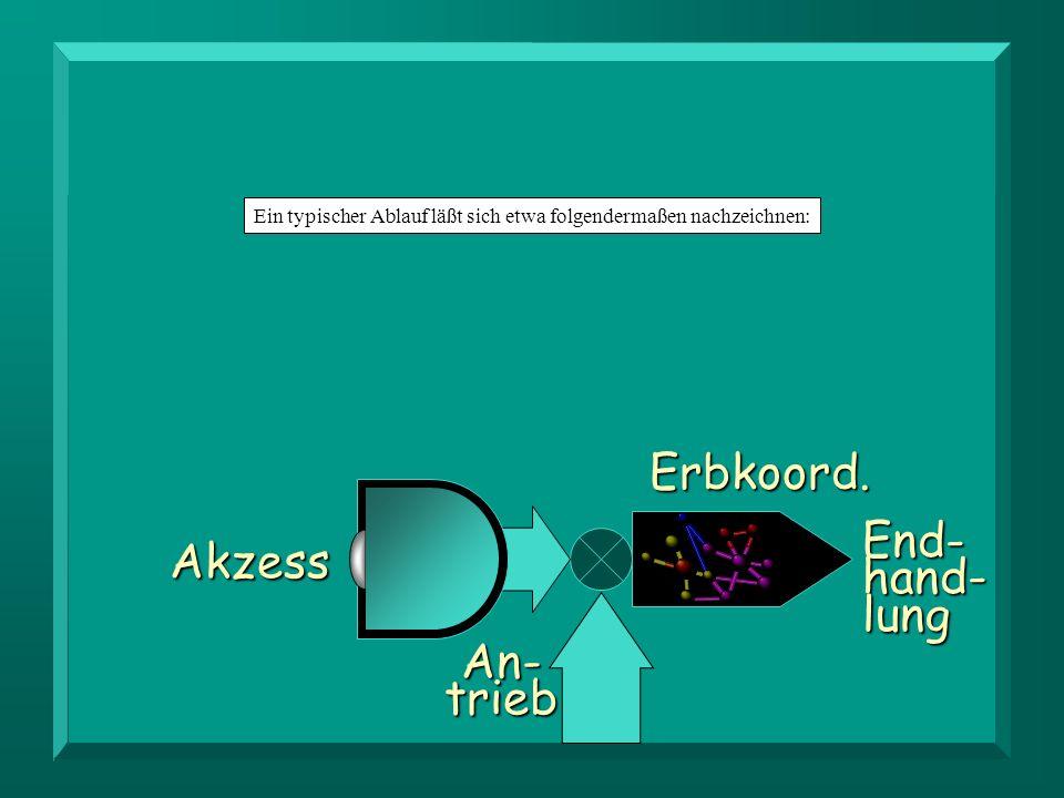 Erbkoord.End-hand-lung Akzess An-trieb Det Ein typischer Ablauf läßt sich etwa folgendermaßen nachzeichnen:Erbkoord.End-hand-lung Akzess An-trieb