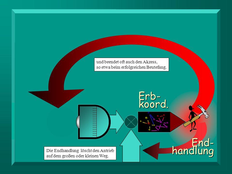 End-handlung Erb-koord.Die Endhandlung löscht den Antrieb auf dem großen oder kleinen Weg.