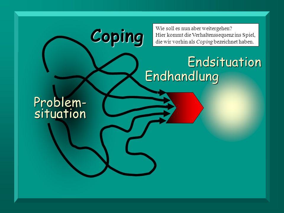 Problem- situation Endhandlung Endsituation Coping Wie soll es nun aber weitergehen? Hier kommt die Verhaltenssequenz ins Spiel, die wir vorhin als Co