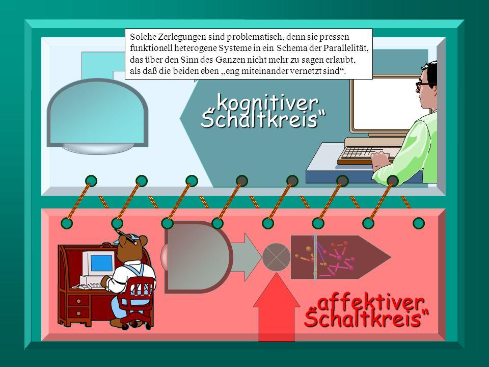 affektiver Schaltkreis kognitiver Schaltkreis Solche Zerlegungen sind problematisch, denn sie pressen funktionell heterogene Systeme in ein Schema der