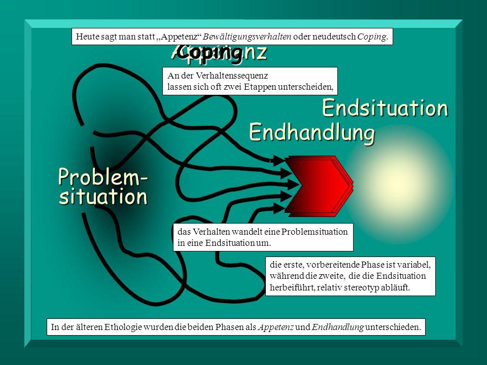 AppetenzCoping Problem- situation Endhandlung Endsituation das Verhalten wandelt eine Problemsituation in eine Endsituation um. An der Verhaltensseque
