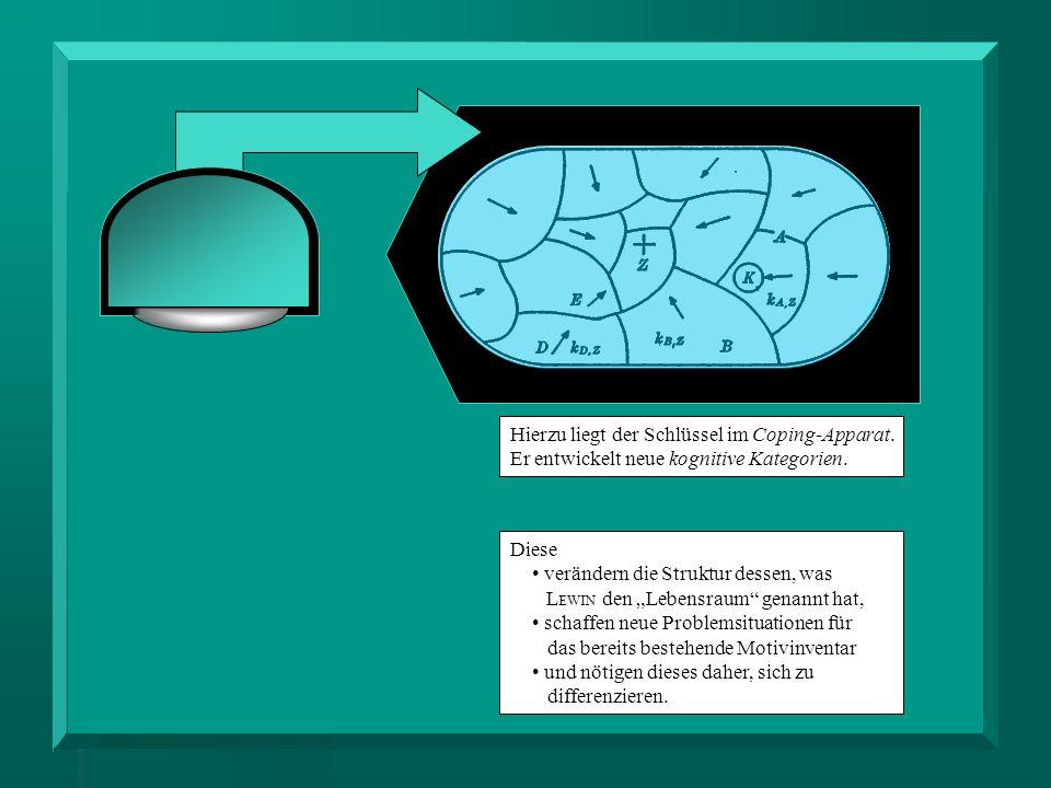 Hierzu liegt der Schlüssel im Coping-Apparat. Er entwickelt neue kognitive Kategorien. Diese verändern die Struktur dessen, was L EWIN den Lebensraum