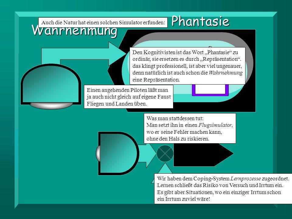 Coping Wahrnehmung Phantasie Wir haben dem Coping-System Lernprozesse zugeordnet.