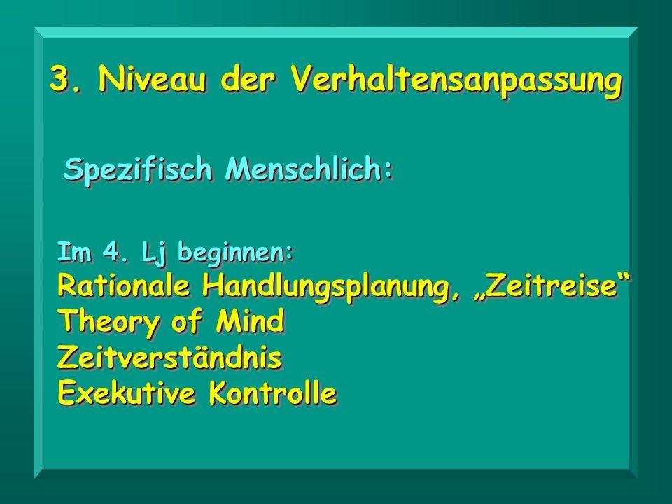 3. Niveau der Verhaltensanpassung Spezifisch Menschlich: Im 4. Lj beginnen: Rationale Handlungsplanung, Zeitreise Theory of Mind Zeitverständnis Exeku