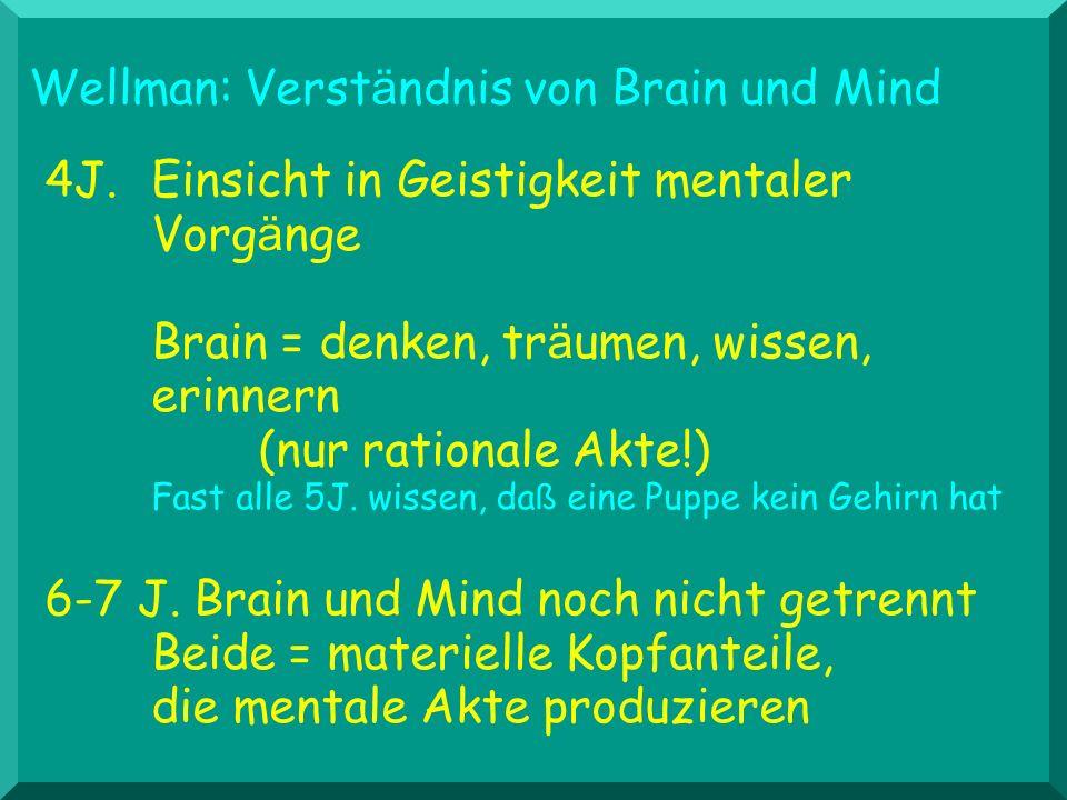4J. Einsicht in Geistigkeit mentaler Vorg ä nge Brain = denken, tr ä umen, wissen, erinnern (nur rationale Akte!) Fast alle 5J. wissen, da ß eine Pupp