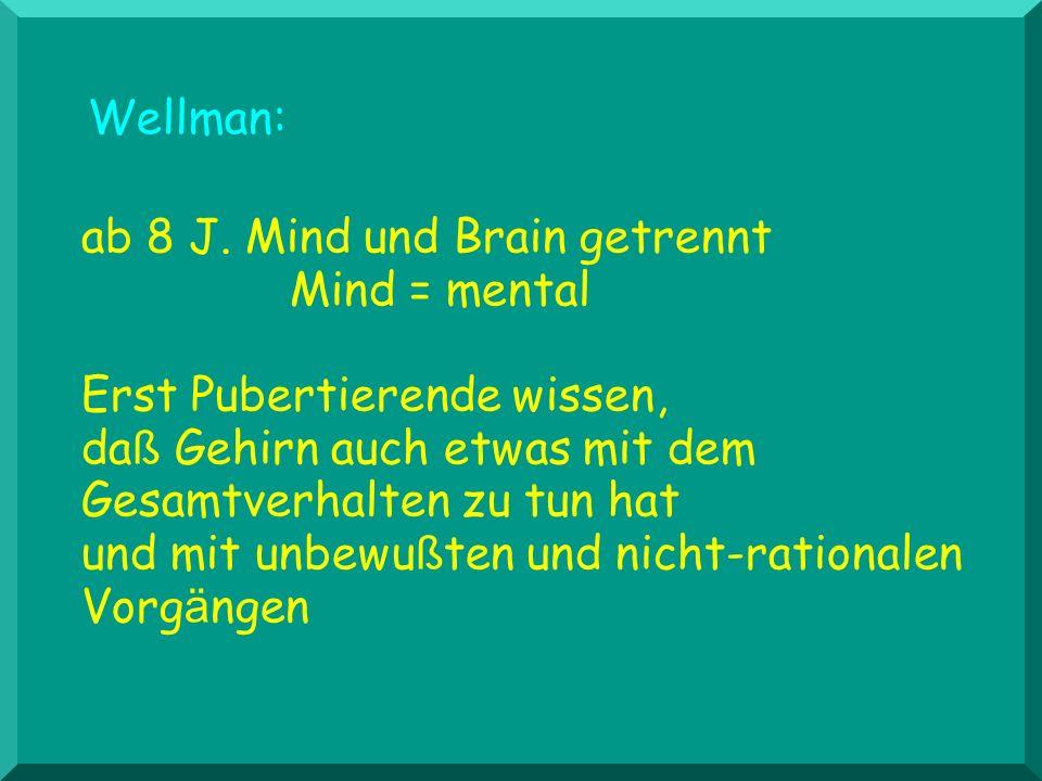 ab 8 J. Mind und Brain getrennt Mind = mental Erst Pubertierende wissen, da ß Gehirn auch etwas mit dem Gesamtverhalten zu tun hat und mit unbewu ß te