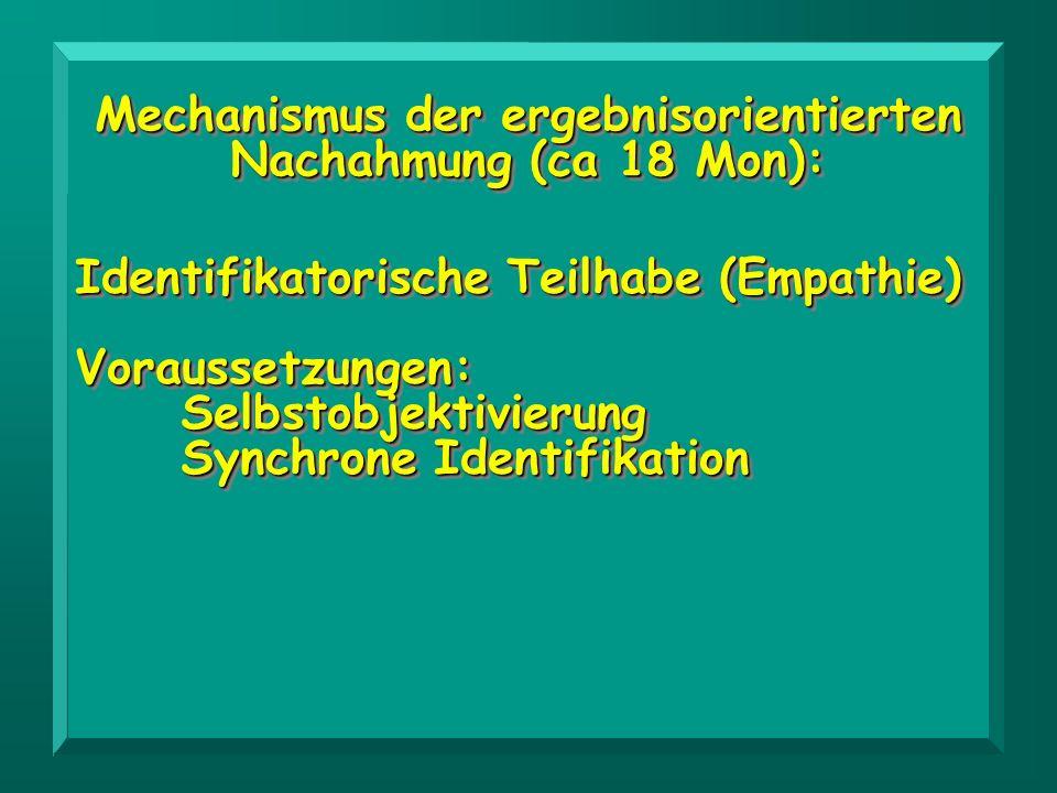 Identifikatorische Teilhabe (Empathie) Voraussetzungen: Selbstobjektivierung Synchrone Identifikation Identifikatorische Teilhabe (Empathie) Vorausset