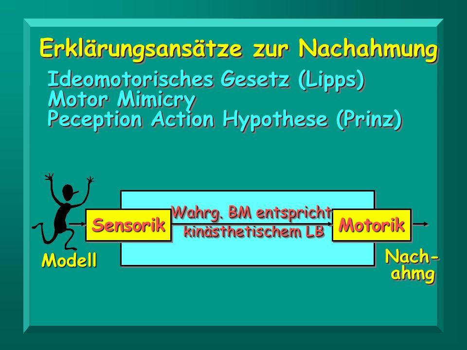 Erklärungsansätze zur Nachahmung Ideomotorisches Gesetz (Lipps) Motor Mimicry Peception Action Hypothese (Prinz) Ideomotorisches Gesetz (Lipps) Motor
