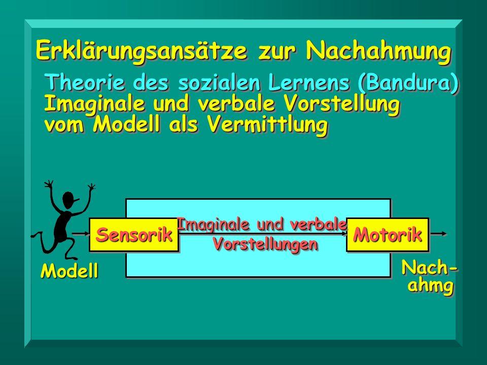 Erklärungsansätze zur Nachahmung Theorie des sozialen Lernens (Bandura) Imaginale und verbale Vorstellung vom Modell als Vermittlung Theorie des sozia