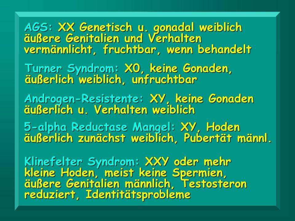 Typ XX/XY: äußere Genitalien uneindeutig.