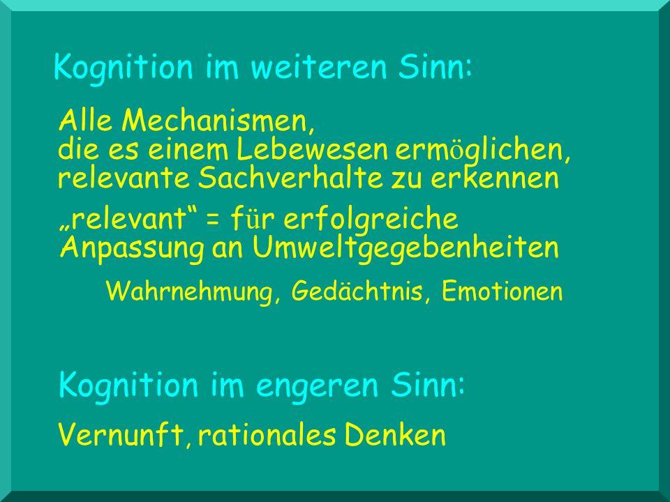 Interaktion der drei Systeme AutonomieanspruchAutonomieanspruch Bedürf./Toleranz f.Sicherheit Bedürf./Toleranz f.Erregung