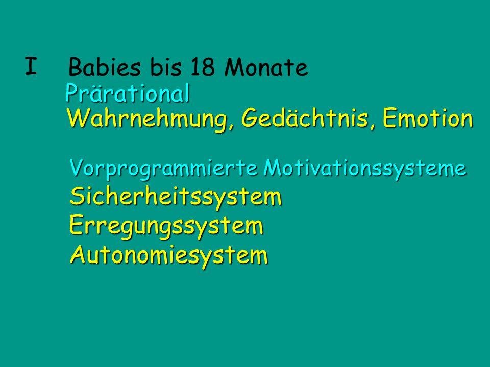 I Affen Babies bis 18 Monate Vorprogrammierte Motivationssysteme SicherheitssystemErregungssystemAutonomiesystem Prärational Wahrnehmung, Gedächtnis,