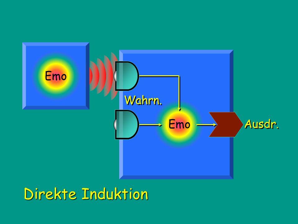 Emo Direkte Induktion Wahrn. Ausdr.
