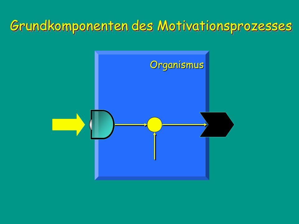 Grundkomponenten des Motivationsprozesses Organismus