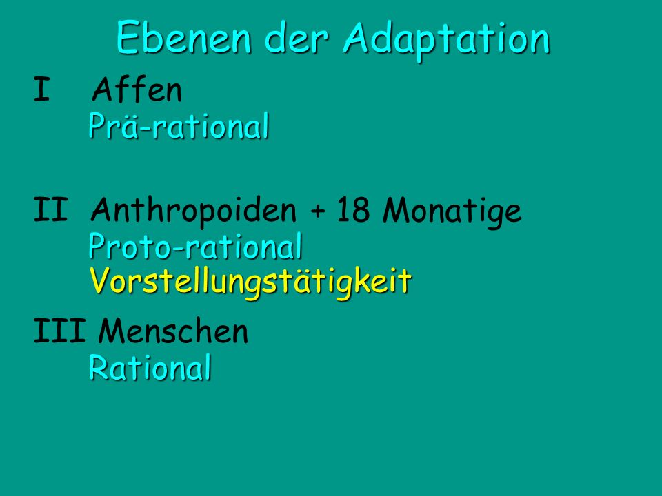 II Anthropoiden Proto-rational Vorstellungstätigkeit III Menschen I AffenPrä-rational Rational Ebenen der Adaptation + 18 Monatige
