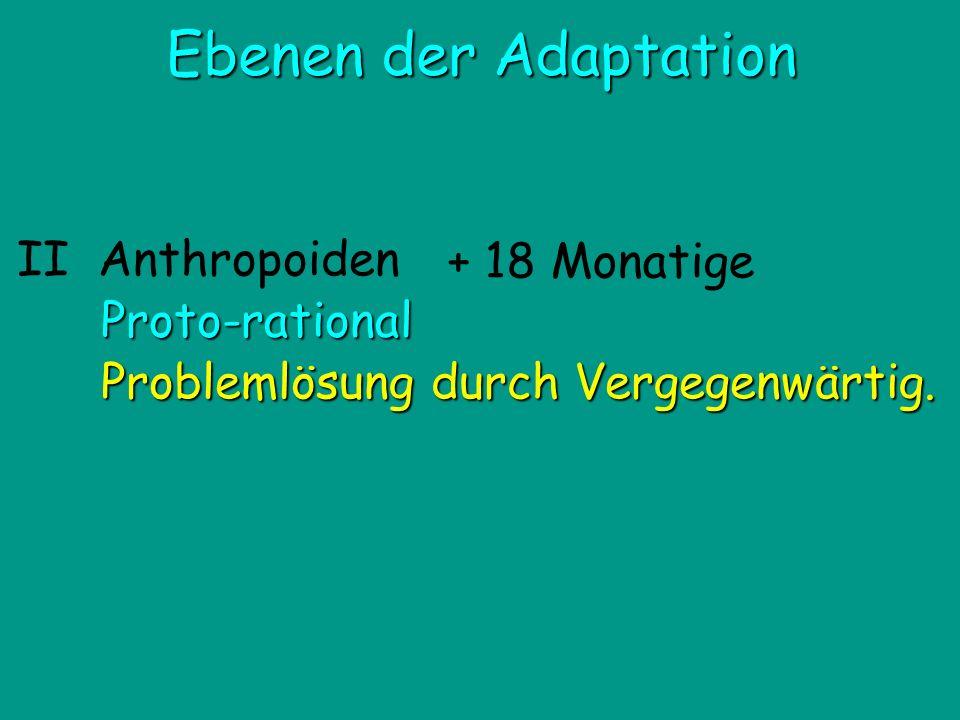II Anthropoiden Proto-rational Problemlösung durch Vergegenwärtig. Ebenen der Adaptation + 18 Monatige