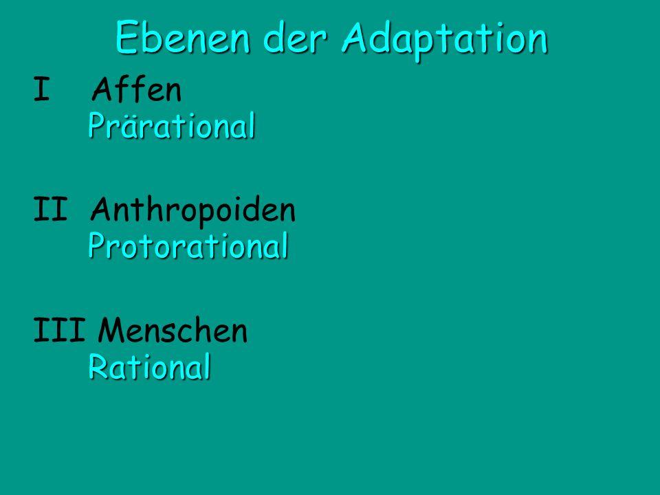 III Menschen II Anthropoiden I Affen Prärational Protorational Rational Ebenen der Adaptation