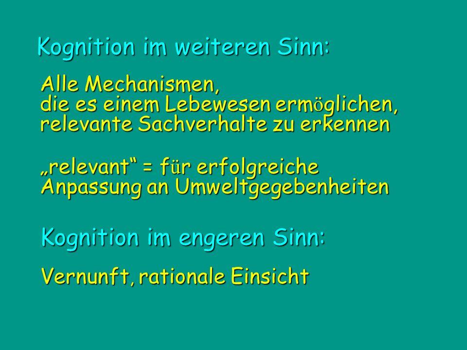 Kognition im engeren Sinn: Kognition im weiteren Sinn: relevant = f ü r erfolgreiche Anpassung an Umweltgegebenheiten Alle Mechanismen, die es einem L