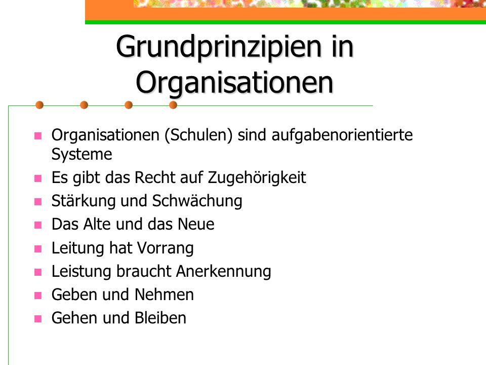 Grundprinzipien in Organisationen Organisationen (Schulen) sind aufgabenorientierte Systeme Es gibt das Recht auf Zugehörigkeit Stärkung und Schwächun