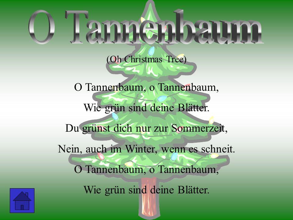 (Oh Christmas Tree) O Tannenbaum, o Wie grün sind deine Blätter. Du grünst dich nur zur Sommerzeit, Nein, auch im Winter, wenn es schneit. O Tannenbau