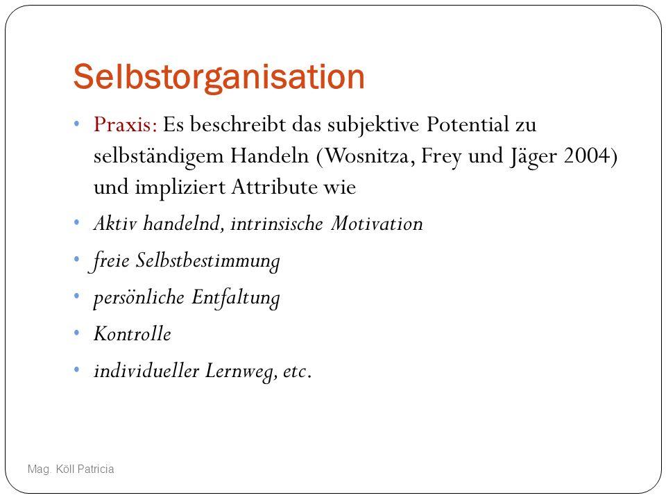 Selbstorganisation Praxis: Es beschreibt das subjektive Potential zu selbständigem Handeln (Wosnitza, Frey und Jäger 2004) und impliziert Attribute wi