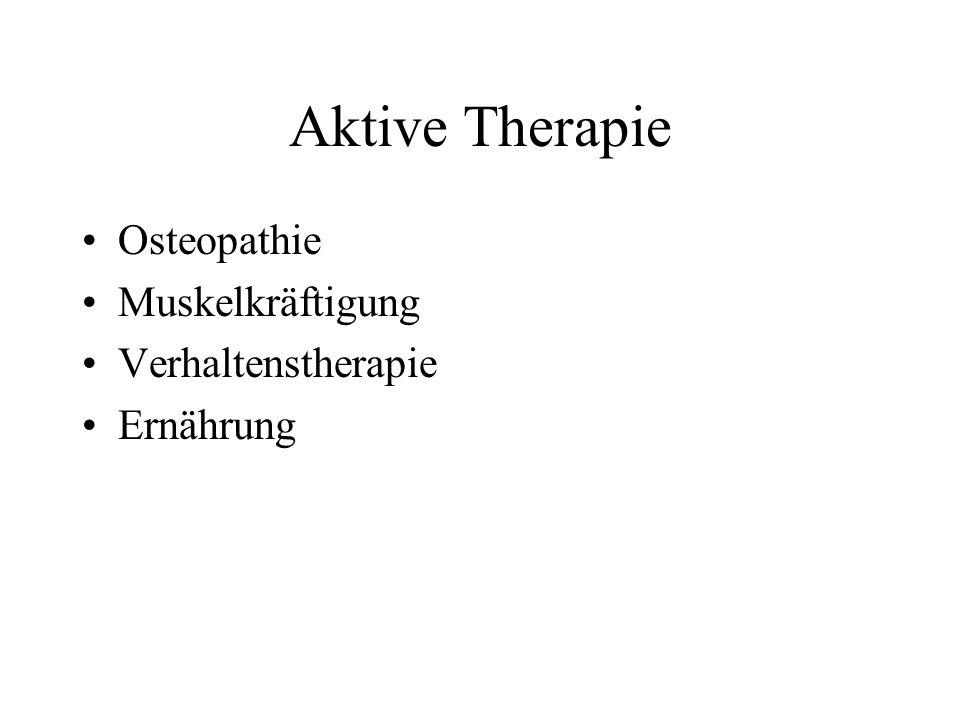 Aktive Therapie Osteopathie Muskelkräftigung Verhaltenstherapie Ernährung